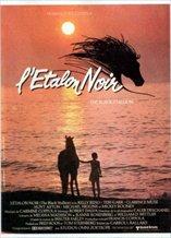 The Black Stallion (1979)