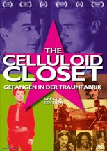 The Celluloid Closet (1995)